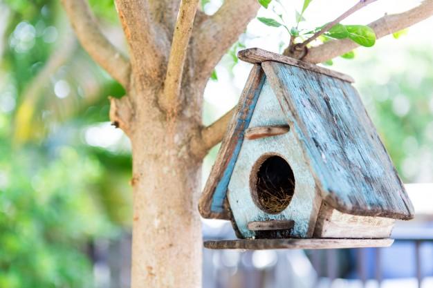 fuglehus til haven